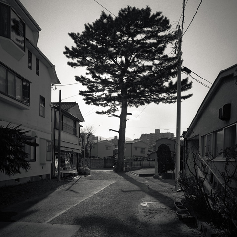 Y2#430 | odawara